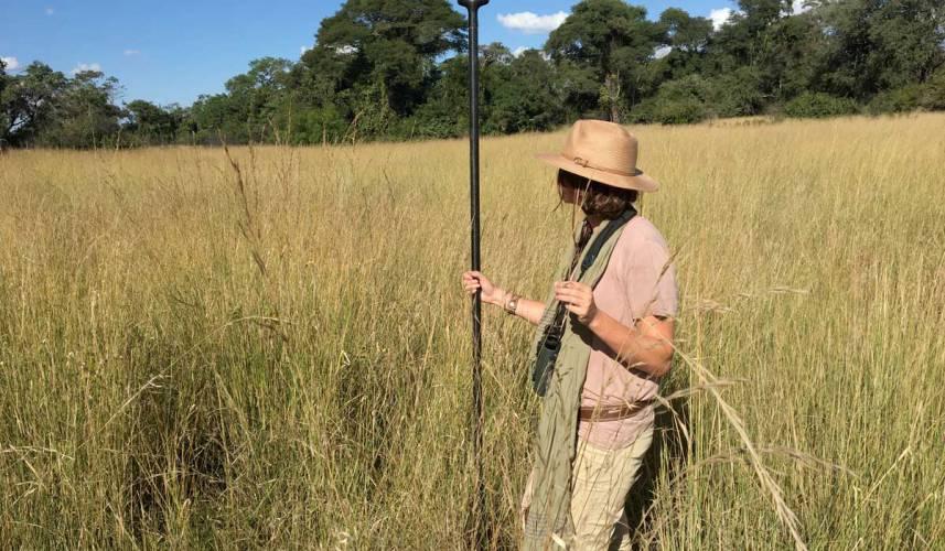 Women's Serengeti Range: Made for Summer Style
