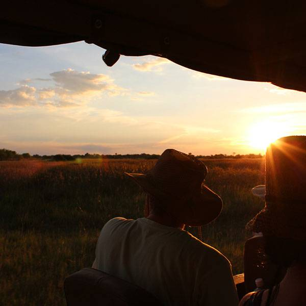 Why You Should (Always) Go on an African Safari
