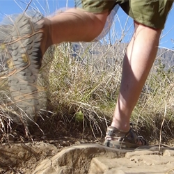 A man walking through the bush wearing green shorts and Merrell shoes