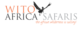 WITO-AFRICA-AFFILIATE-CODE-ONLY logo
