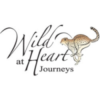 Wild At Heart Journeys Logo