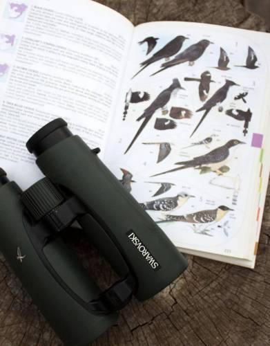 Pair your 'Sasol Birds of Southern Africa' with a pair of high-quality binoculars for easy bird identification on safari.