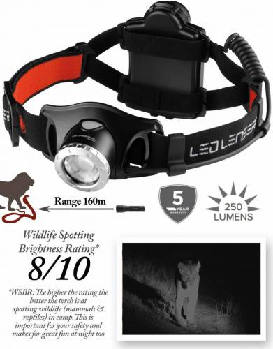 H7.2 Ledlenser Safari Headlamp