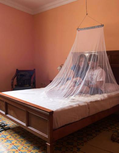 Double MicroNet Mosquito Net