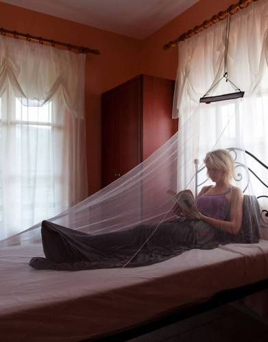 Single MicroNet Mosquito Net