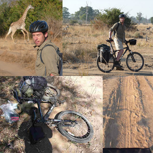 Steve Adams expedition testing safari clothing on a cycle safari in Luangwa, Zambia, and showing elephant prints on the road