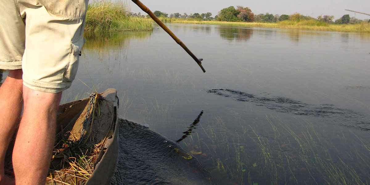 A man's legs standing in a mekoro wearing safari shorts on a paddling safari in the Okavango Delta, Botswana