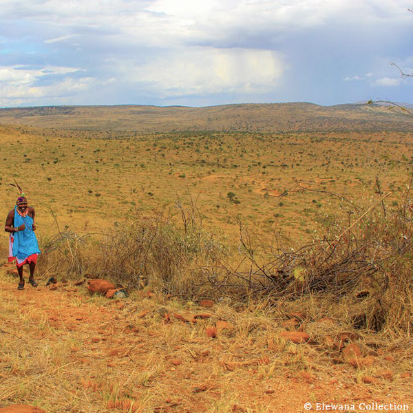 Masai Man in traditional clothing and running on the running track with the plains in the background at Loisaba Tented Camp
