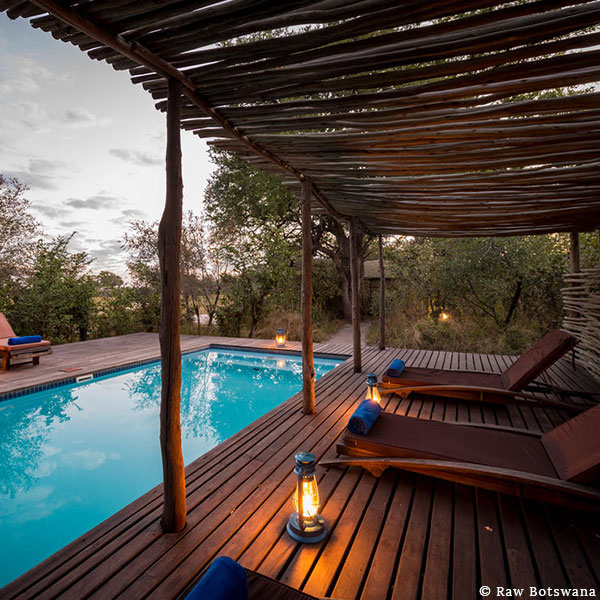 Blue pool in a wooden deck with deck chairs and hurricane lamps under a wooden shelter overlooking the bush at Raw Botswana