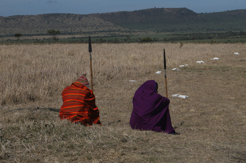 Masaai askaris in their shuka on Serengeti plains close to Klein's Camp - this is how they slept overnight tucked under their shuka.