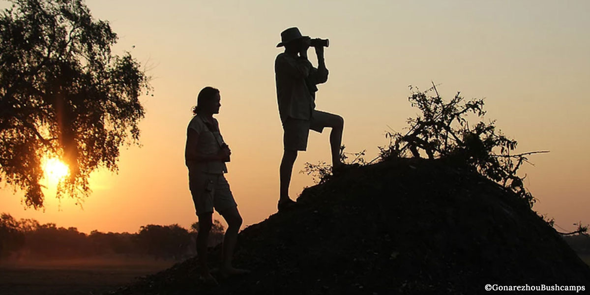 A man taking photographs and a woman with binoculars wearing safari clothing on a walking safari in Gonarezhou at sunset