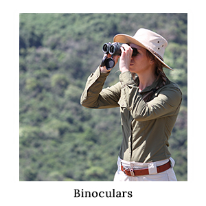 A woman in safari clothing game-viewing or bird-watching through a pair of high-quality binoculars on safari in Africa