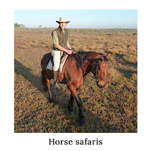 A man wearing a safari gilet fleece, insect repellent shirt, and hat riding a brown horse in a game reserve on a horse safari