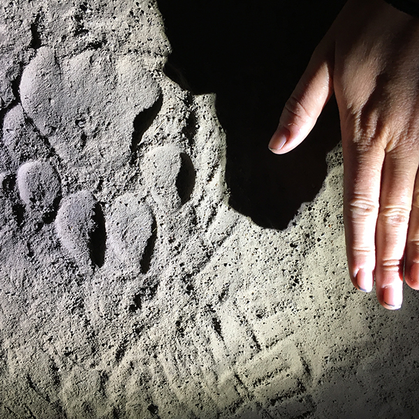 A lion track in the white sand with a hand next to it as a size comparison at night in Kafue Zambia