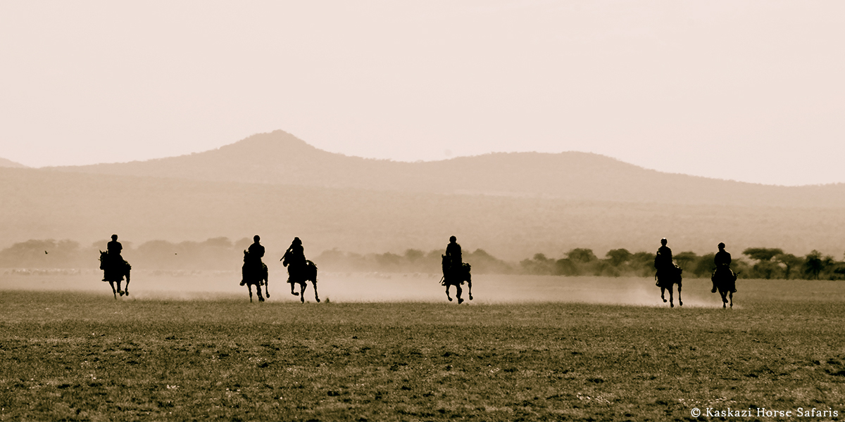 Silhouette of six horse-riders galloping through an open plain with hills and forest behind them on horse safari in Tanzania