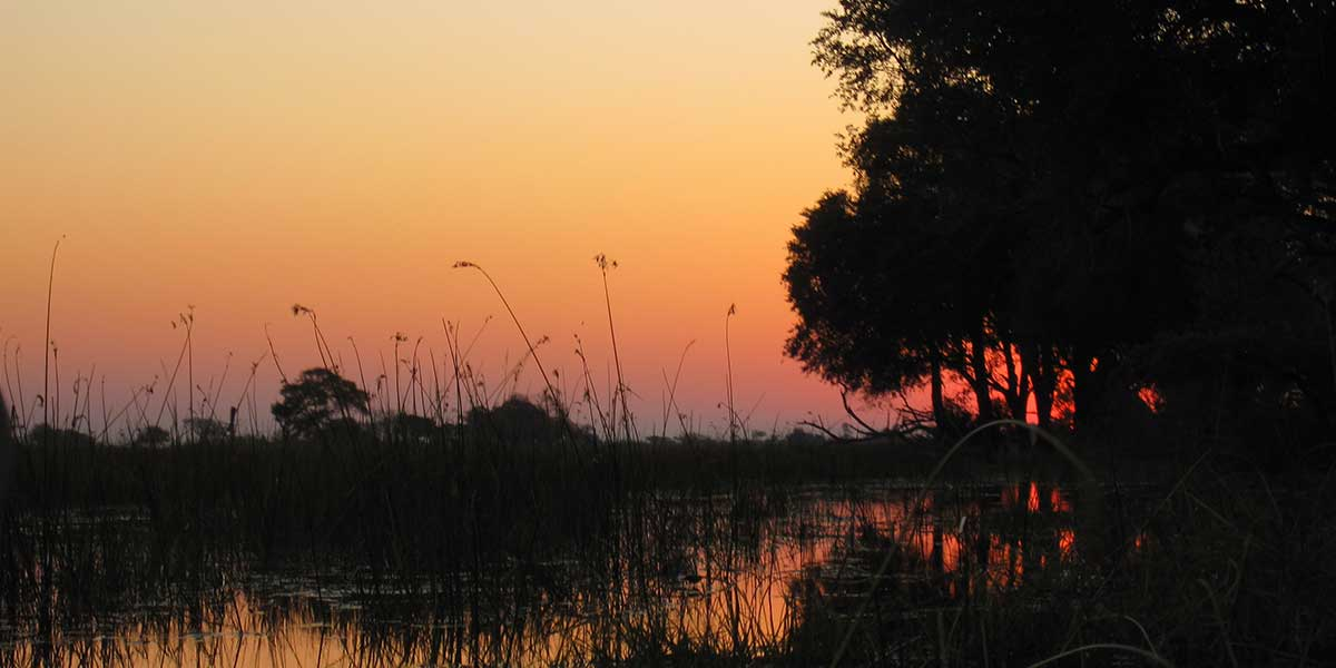 A colourful sunset reflected on a river amongst silhouetted trees and reeds.
