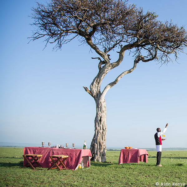 Waiter with drinks waving, with two tables set under a tree in the middle of the bush on horse safari with Ride Kenya