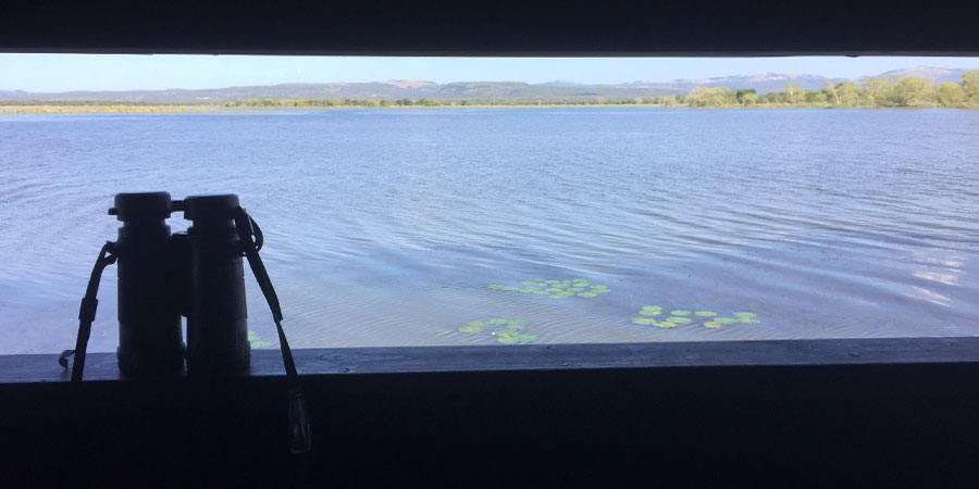 Safari travel self-drive bird hide overlooking a dam