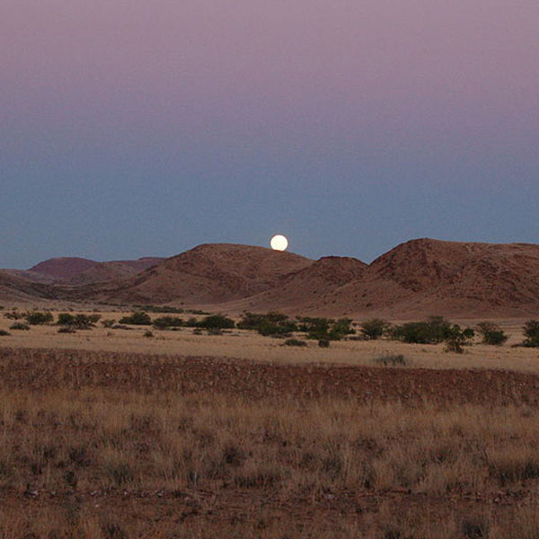 The moon rising behind mountains set against a pink sky in the desert