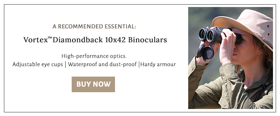 The number one safari essential is a good pair of binoculars. We recommend Vortex Diamondback 10x42.