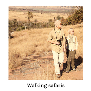 Man and woman dressed in safari shirts, trousers, and knitwear with binoculars on a walking safari in Africa