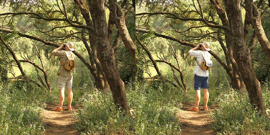 A comparison between two images as a guide on what to wear on an African safari