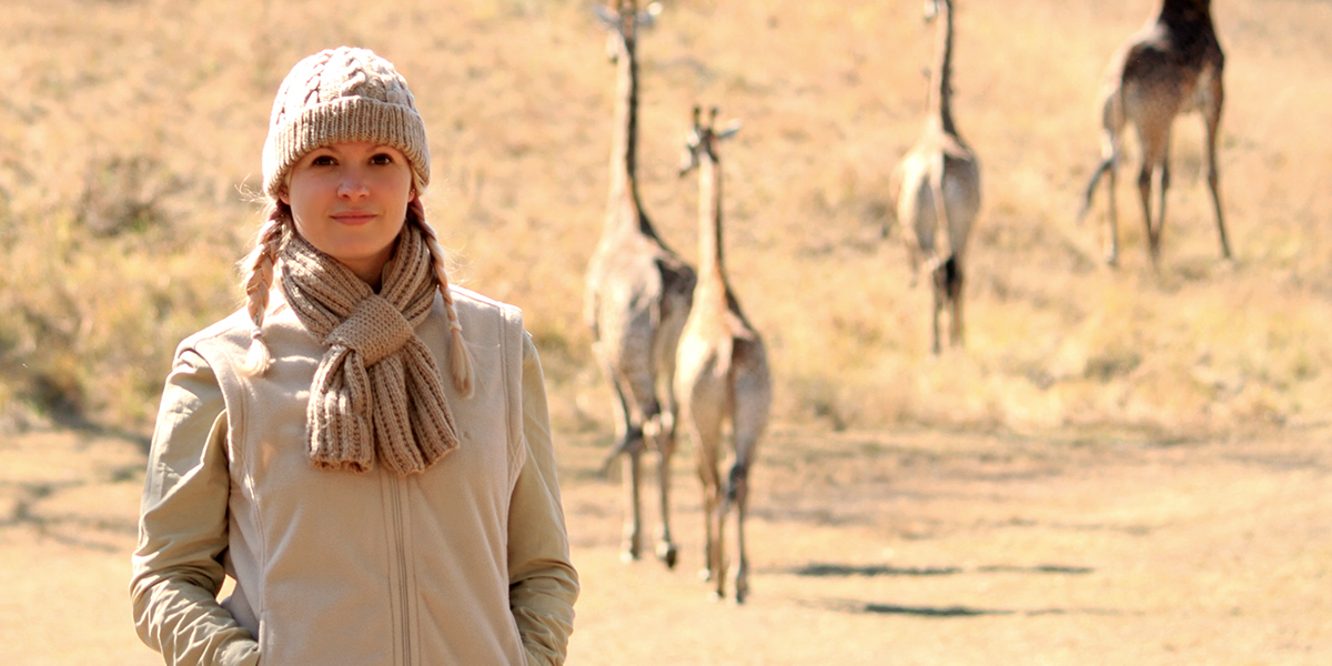A small herd of giraffe walk away from a blonde woman dressed in warm clothing on safari in Africa.