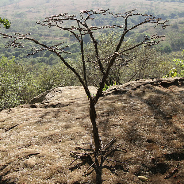 An Acacia tree made from wire