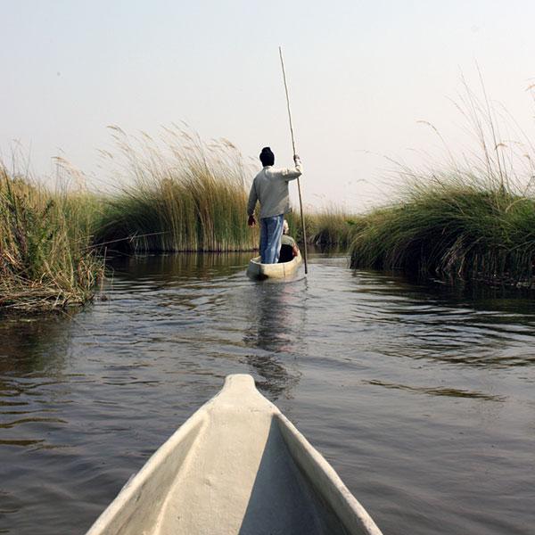 View from a mokoro of a man poling a canoe in the Okavango Delta in Botswana