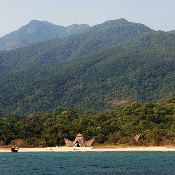 A mountainous forest behind a small strip of beach. A rustic building and a boat are on the beach.