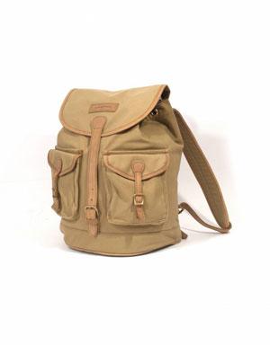 Sandstorm Batian Business Bag Backpack