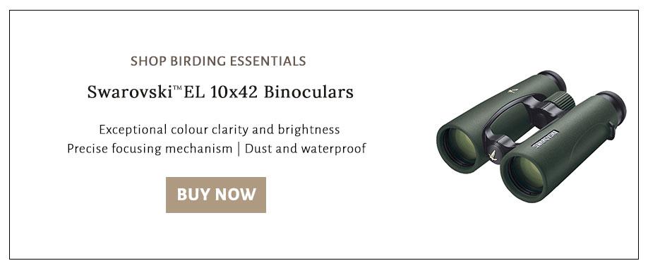 Shop Swarovski EL 10x42 binoculars