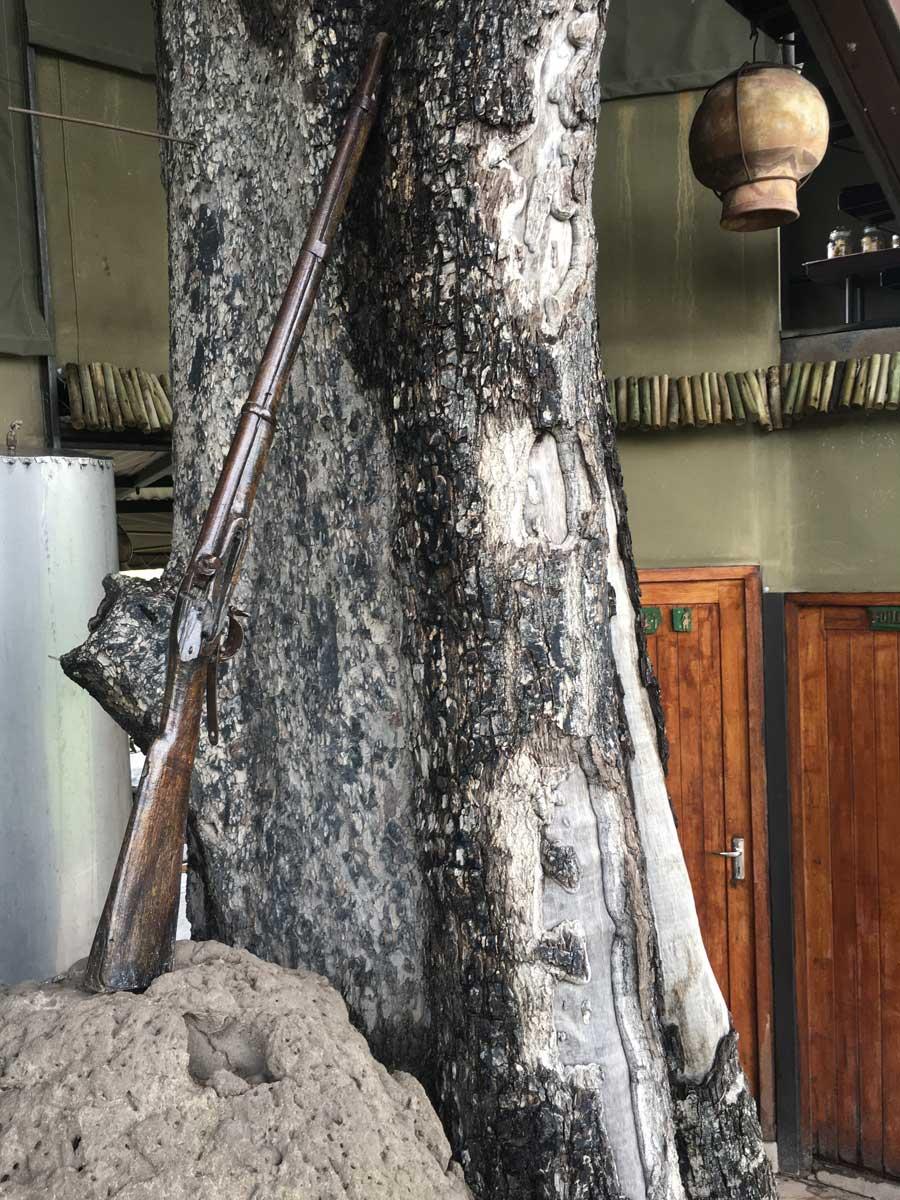 Jackalberry Camp - Vintage Rifle, Nkasa Rupara, Namibia