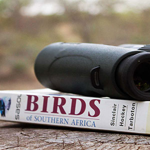 A pair of binoculars resting on top of a bird book