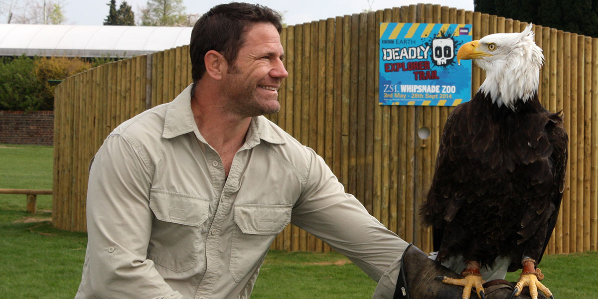 Steve Backshall smiling and wearing an outdoor shirt and glove with a bald eagle perched on his left arm on BBC's Deadly 60