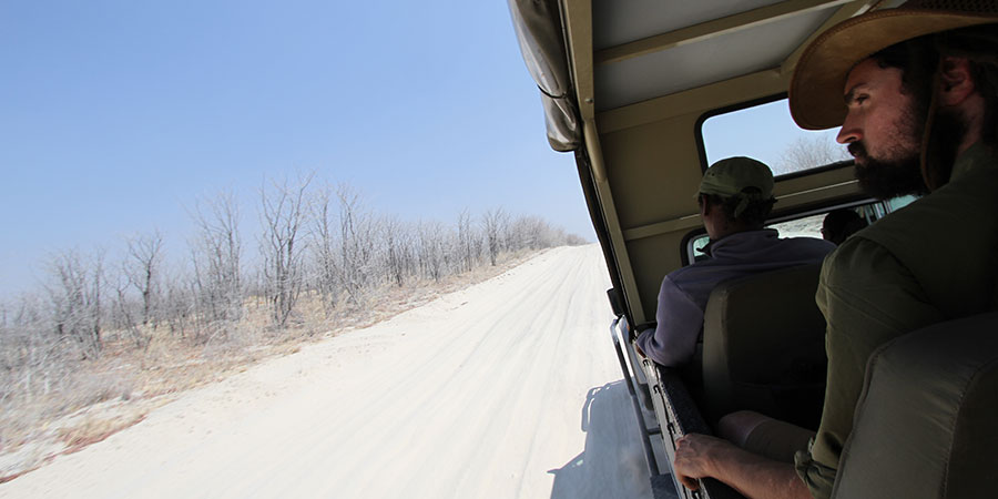 A man on a safari vehicle driving on a dusty road in Botswana