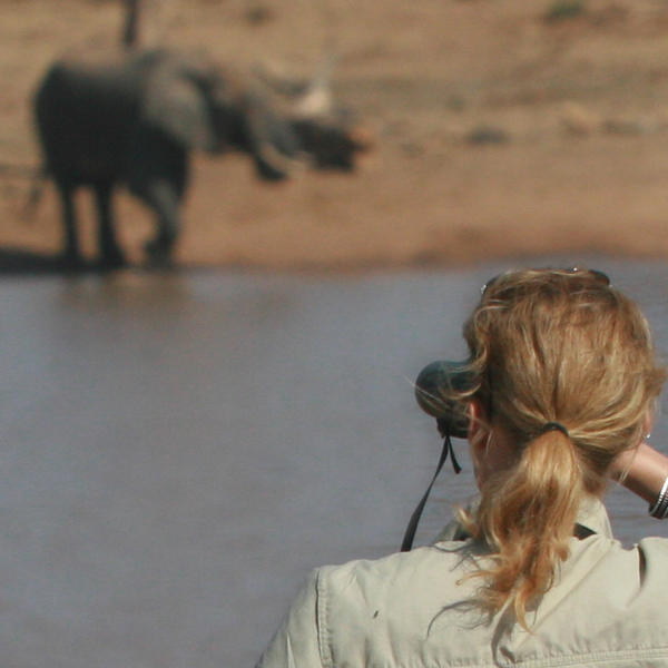 A blonde woman looking at an elephant through binoculars from across a watering hole.