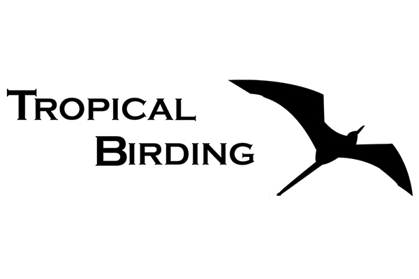 Tropical Birding Tours