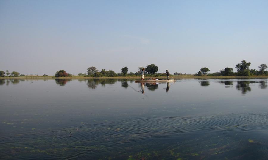 Okavango mekoro and lagoon